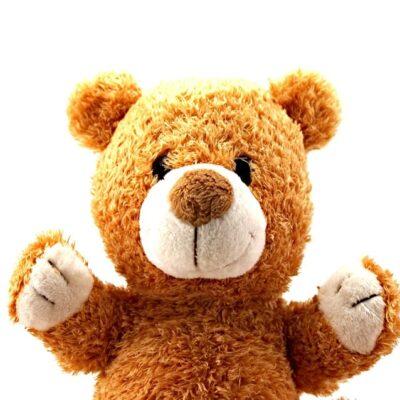 teddy-bear-315390_960_720
